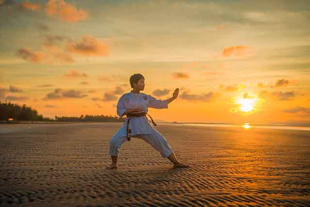 which martial arts should I learn first: Karate