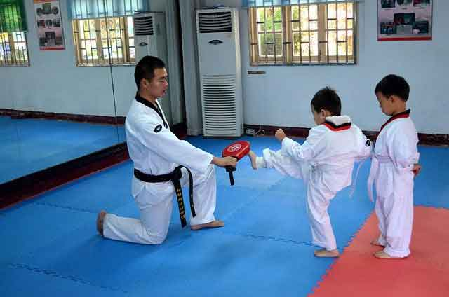 pros and cons of learning taekwondo: good for self discipline
