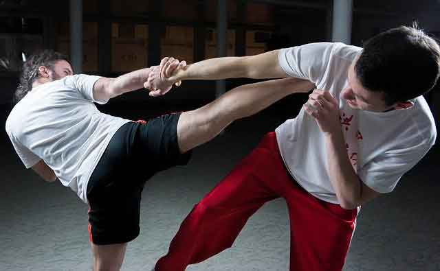 best martial arts for small guys wing chun