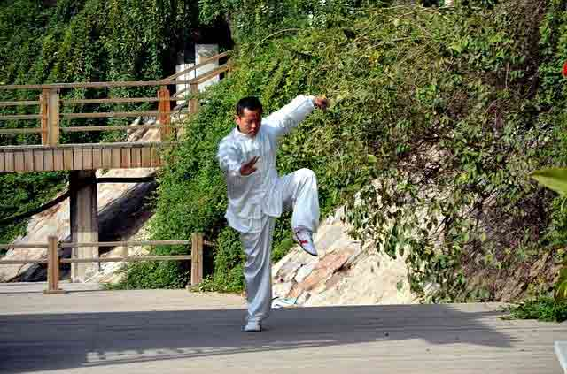difference between karate and kung fu is the stance is different in kung fu