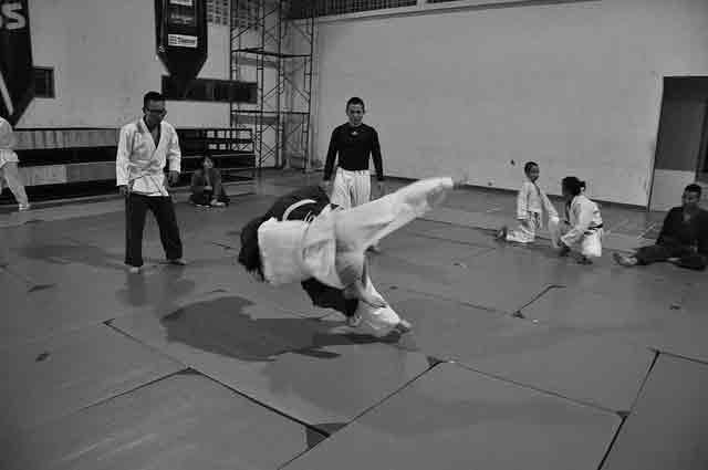 best martial arts for street fighting: judo