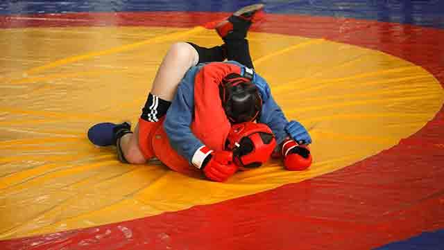 best martial arts for street fighting: sambo
